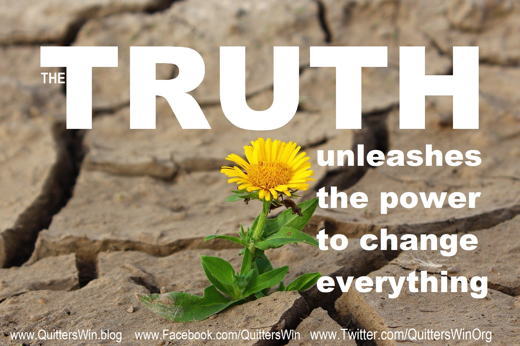 Truth unleashes the power to change everything