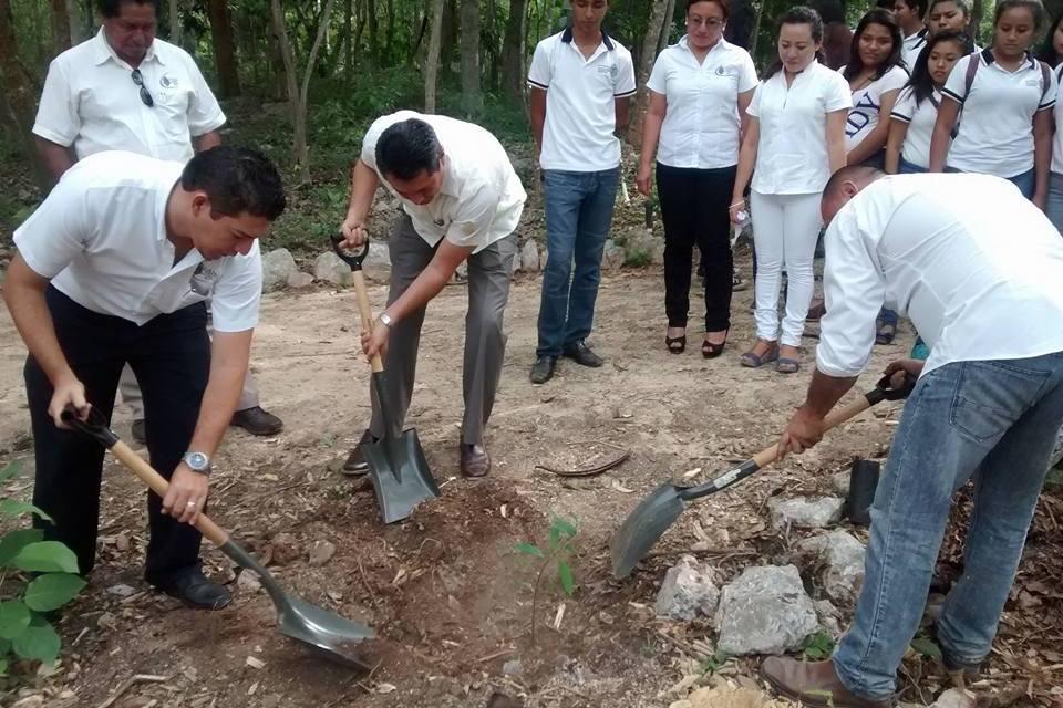 Jornada universitaria dedicada a la reforestación