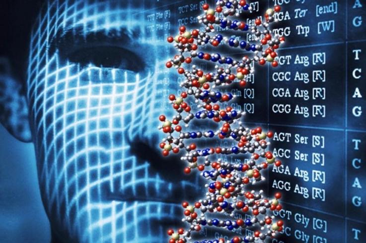 Resultado de imagen para genoma