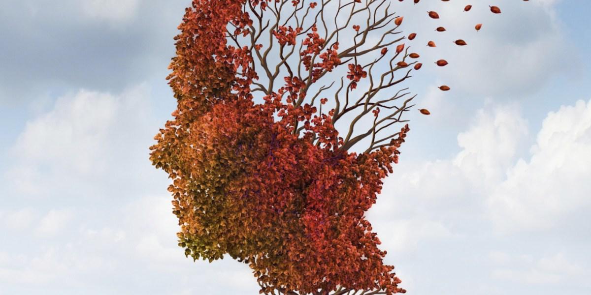 Neurogénesis en la enfermedad de Alzheimer