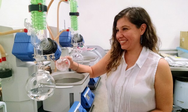 Químicos de México se darán cita en Mérida para la XIV Reunión de la Academia Mexicana de Química Orgánica