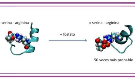 Proteínas con múltiples personalidades
