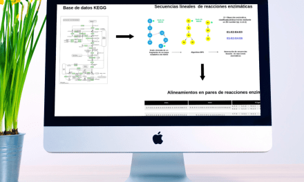 Comparando las vías metabólicas: un intento por comprender cómo hemos llegado hasta el metabolismo moderno