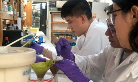 CICY anuncia su Tercera Semana de Ciencia para Jóvenes – Talento CICY