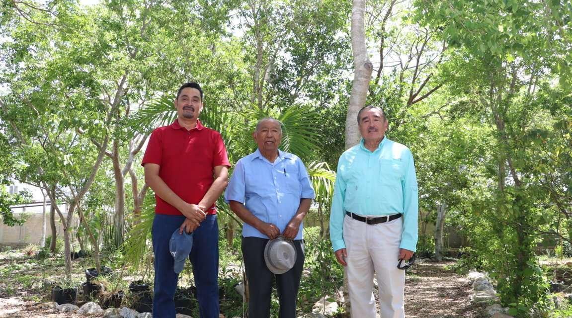 Vivero de la UADY: importante refugio para especies nativas