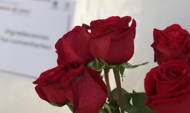 """El CICY invita a su exposición """"Las plantas del amor"""""""