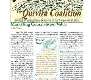 Quivira Newsletter #11