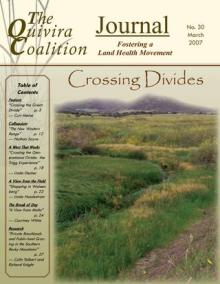 Resilience, Issue 30 – Crossing Divides