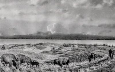 Episode 89 – Lipan Apache: Bringing back the buffalo in Texas