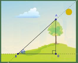 Resultado de imagen para triangulos rectangulos en arboles