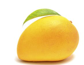 Quiz for Exam - mango - CSS Effect - Image changing effect on mouseover