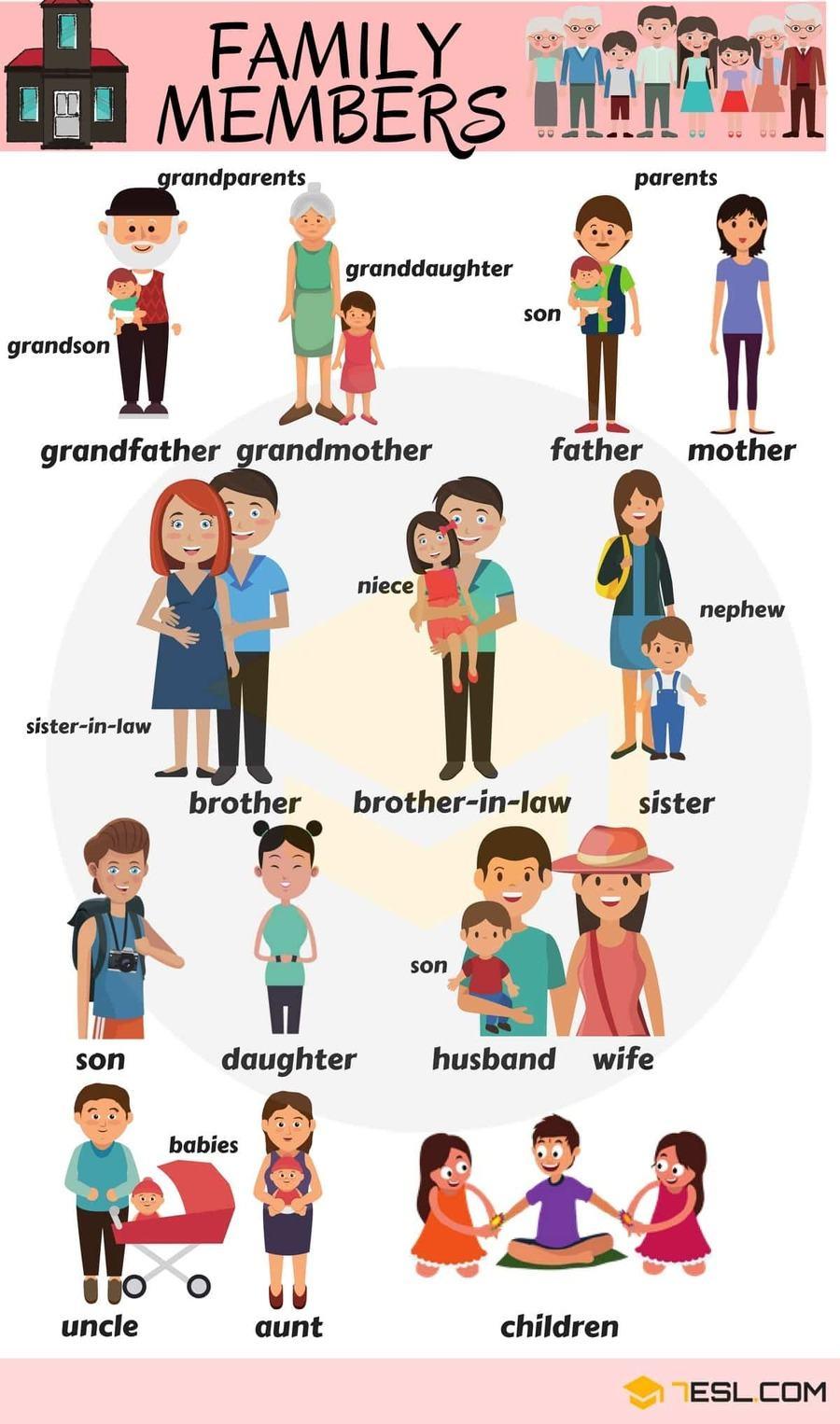Bahasa Inggrisnya Sepupu Perempuan : bahasa, inggrisnya, sepupu, perempuan, Family, Members, (Anggota, Keluarga), English, Quizizz