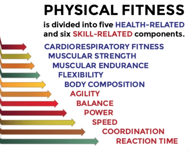 Components Of Fitness Fitness Quiz Quizizz