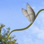 cobra voadora com asas