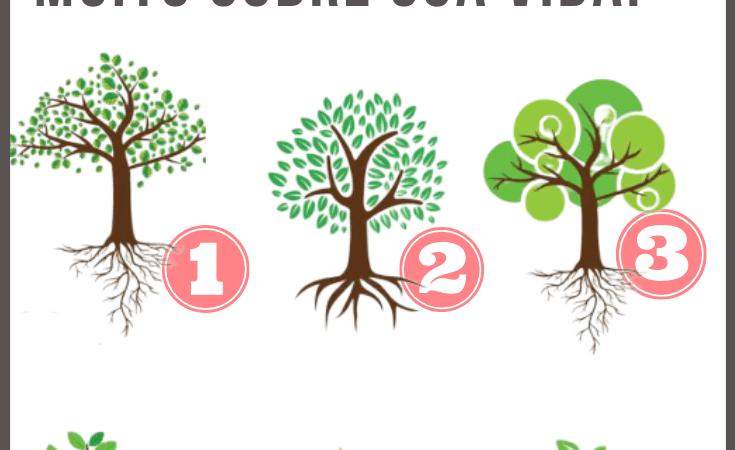 Qual árvore você escolhe? As raízes revelam muito sobre sua vida!