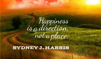 Happiness is a direction