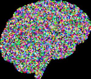 brain-3223582_960_720