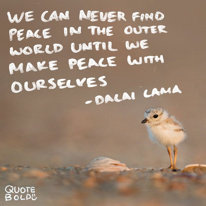 peace mind quotes dalai lama
