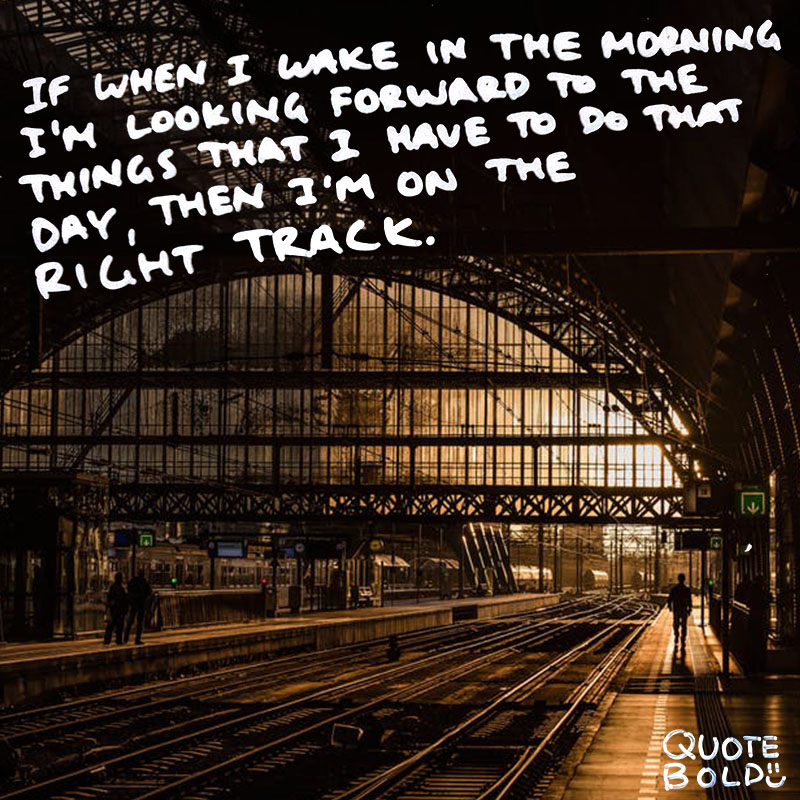 "quote ""And my only rule being if when I wake in the morning I'm looking forward to the things that I have to do that day, then I'm on the right track."" - Demetri Martin"