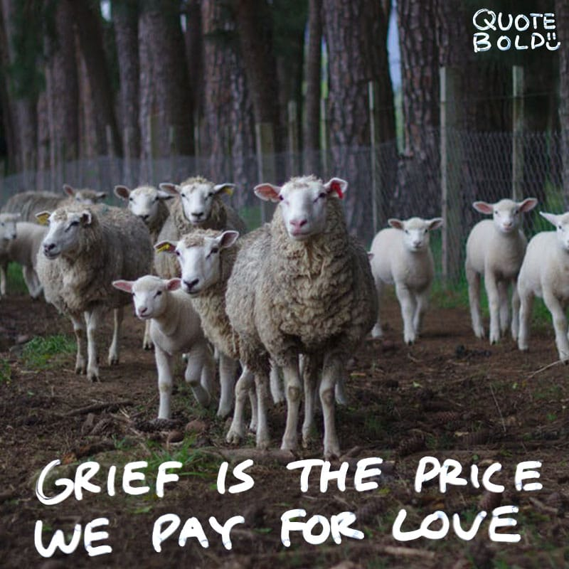 "quote ""Grief is the price we pay for love."" - Queen Elizabeth II"
