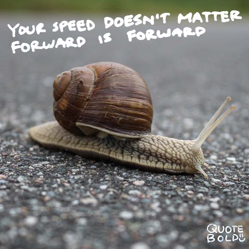 inspirational quotes your speed doesnt matter