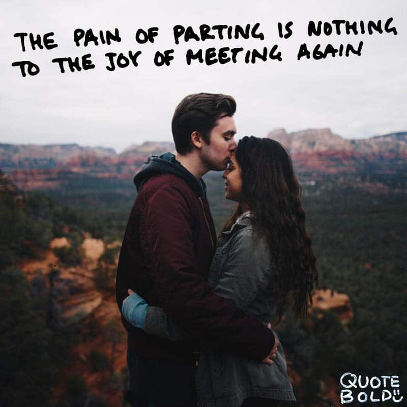 "quote ""The pain of parting is nothing to the joy of meeting again."" - Charles Dickens"