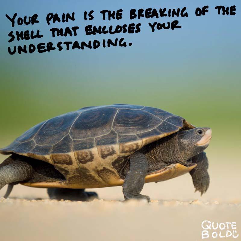 being hurt quotes - Khalil Gibran