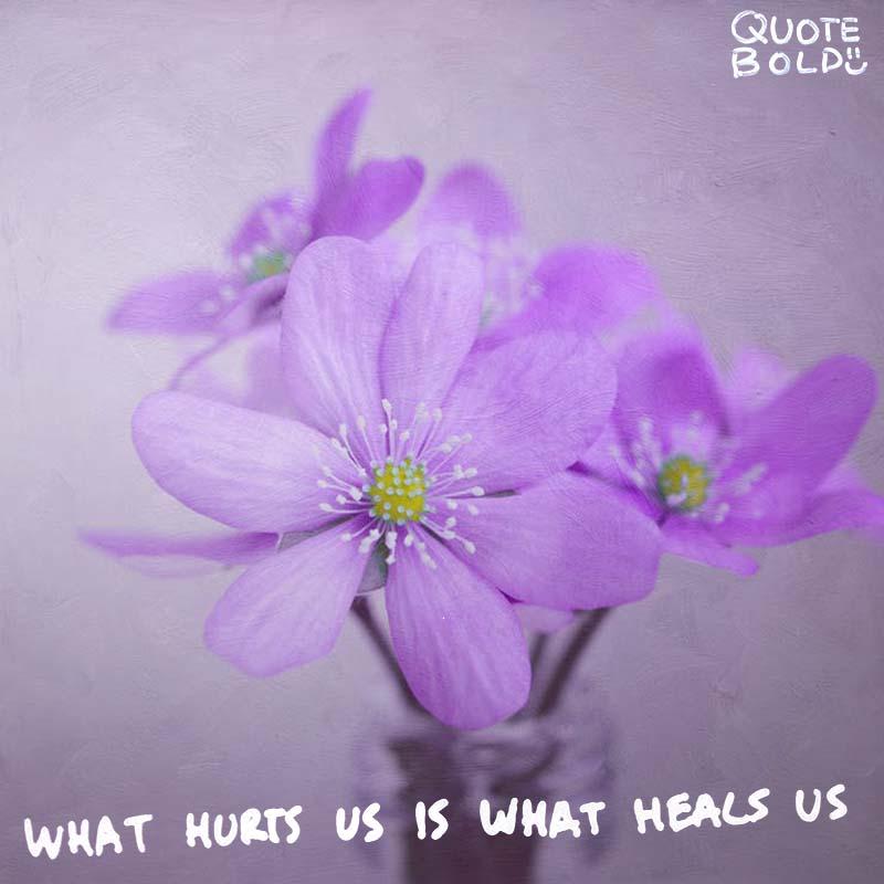 being hurt quotes - Paulo Coelho
