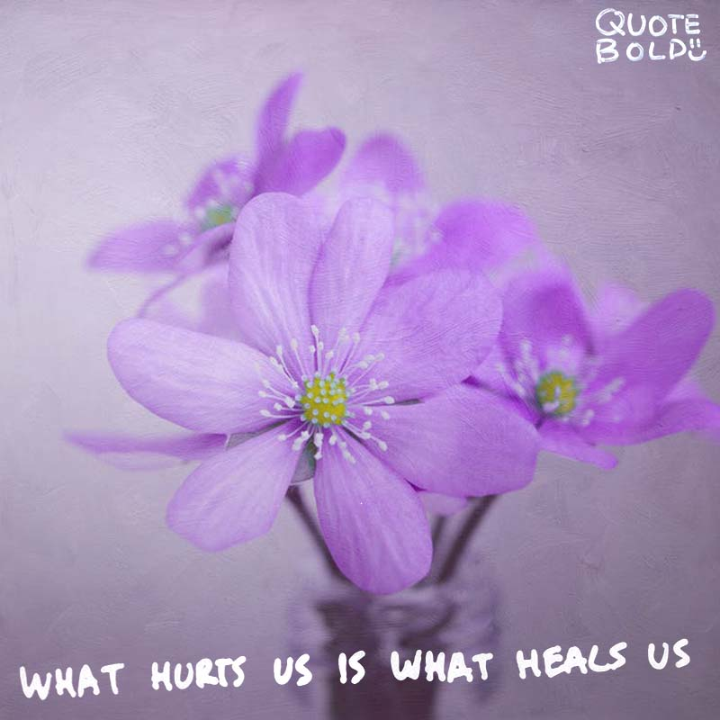 "quote ""What hurts us is what heals us."" - Paulo Coelho"