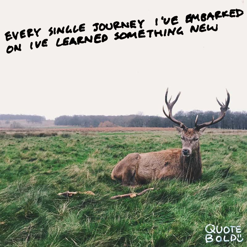 happy journey quotes - Shailene Woodley