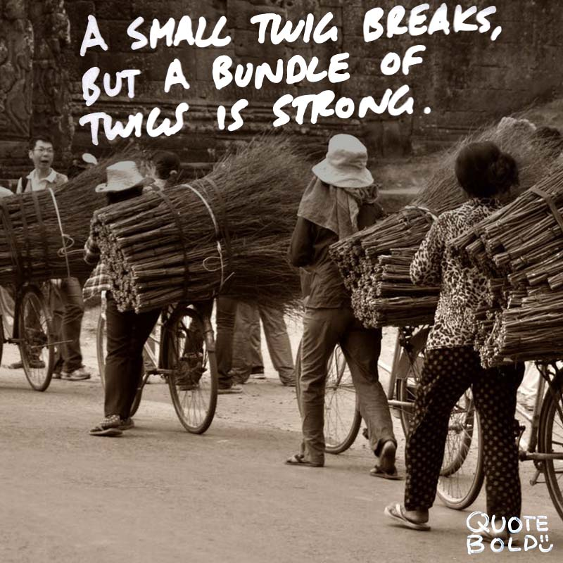"quotes being strong - Tecumseh ""A single twig breaks, but the bundle of twigs is strong."""