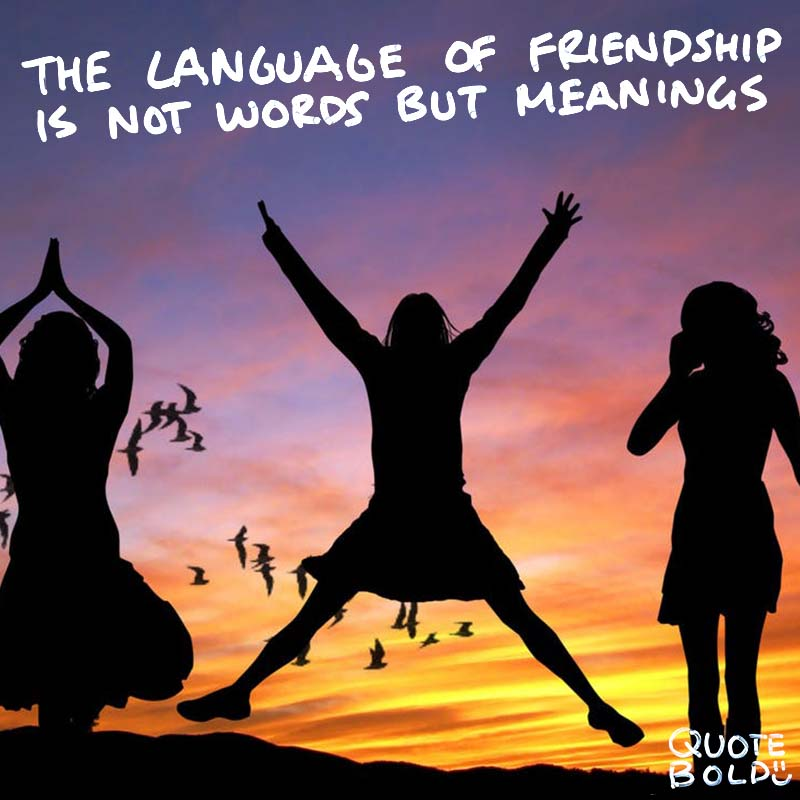 """best friend quotes - Henry David Thoreau """"The language of friendship is not words but meanings."""""""