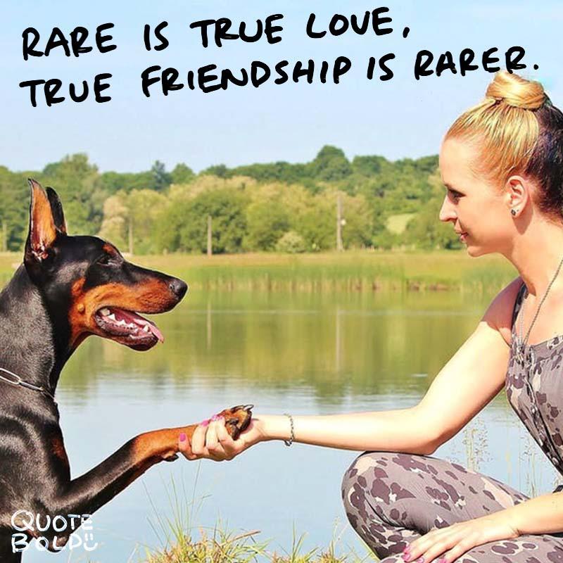 """best friend quotes image - Jean de La Fontaine """"Rare as is true love, true friendship is rarer."""""""