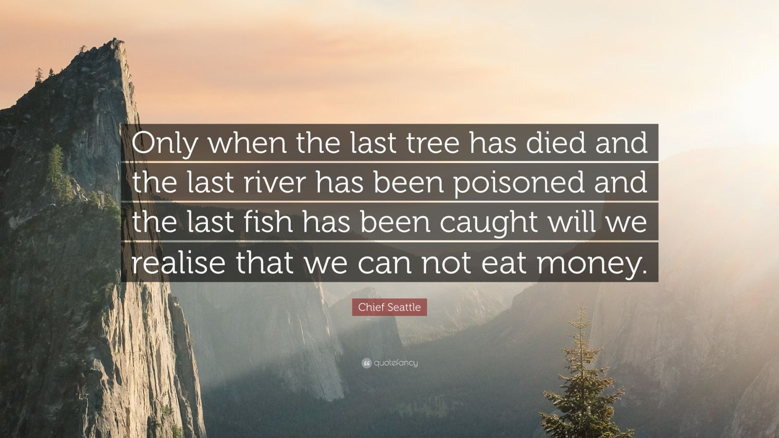 Spirit Science Quotes Wallpapers Chief Seattle Quote Only When The Last Tree Has Died And