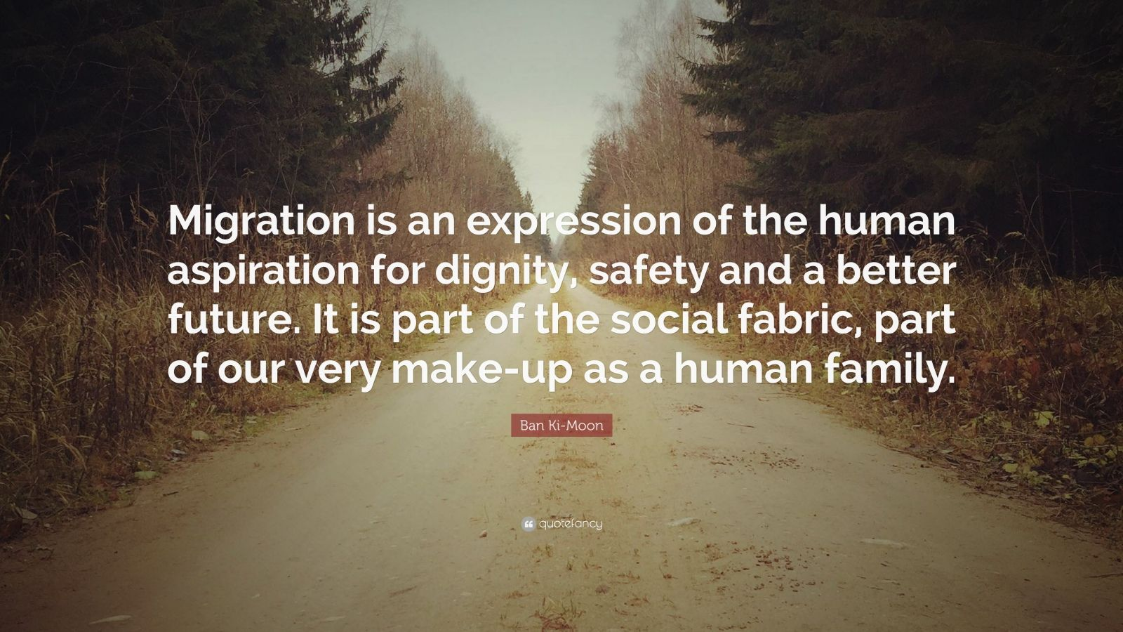 Steve Jobs Wallpaper Quotes Ban Ki Moon Quote Migration Is An Expression Of The