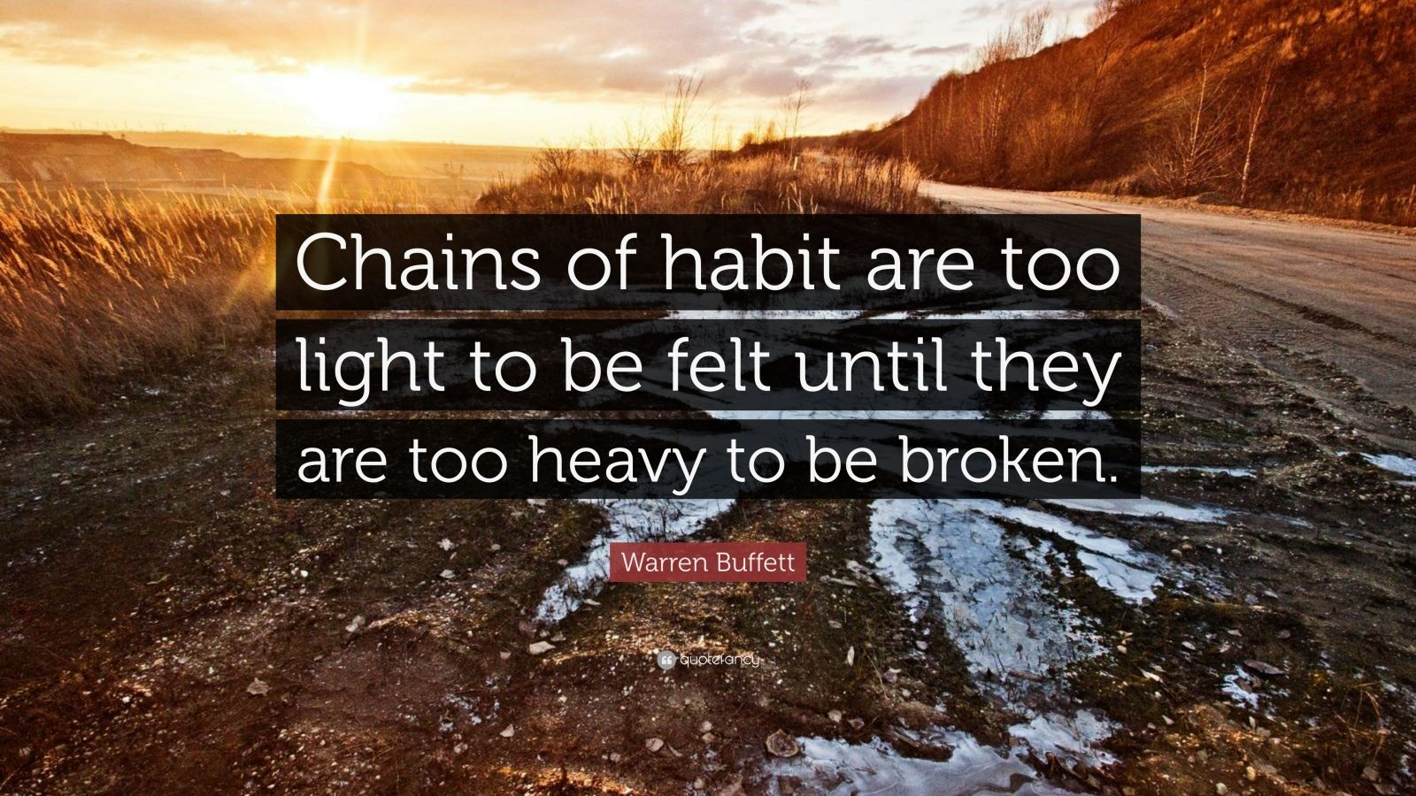 Steve Jobs Wallpaper Quotes Warren Buffett Quote Chains Of Habit Are Too Light To Be