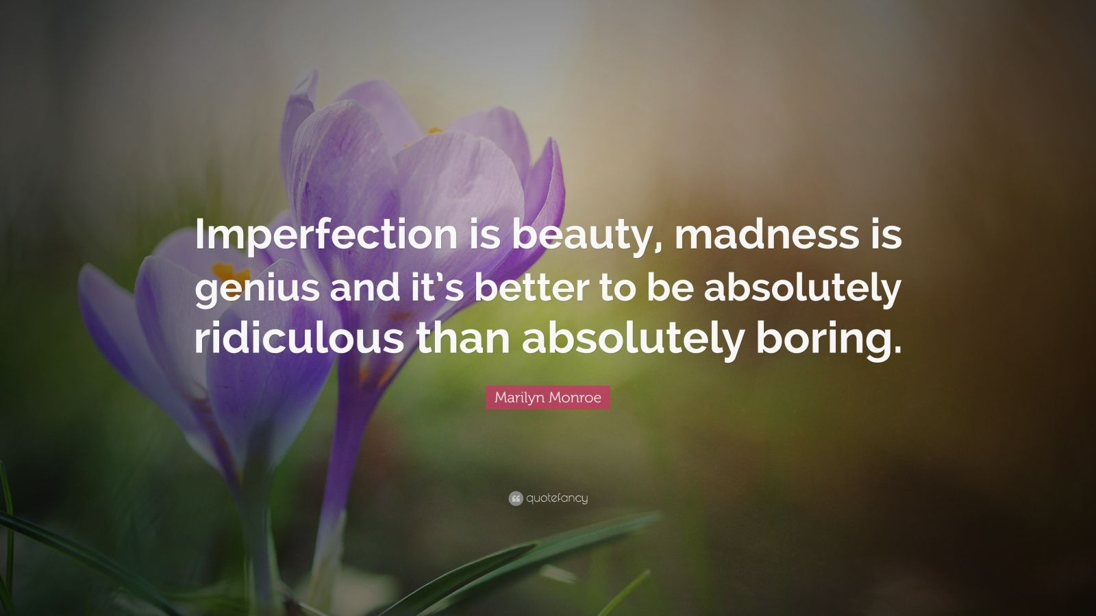 William Shakespeare Love Quotes Wallpaper Marilyn Monroe Quote Imperfection Is Beauty Madness Is