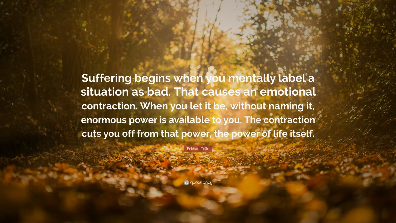 Motivational Wallpapers Without Quotes Eckhart Tolle Quote Suffering Begins When You Mentally