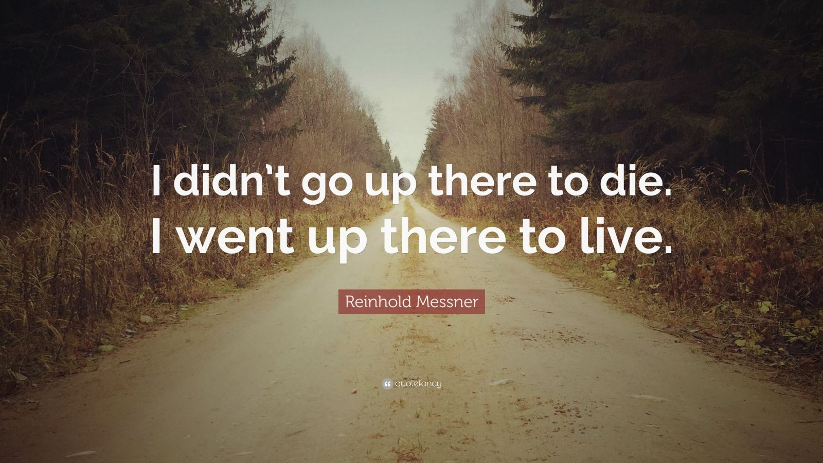 Steve Jobs Wallpaper Quotes Reinhold Messner Quote I Didn T Go Up There To Die I
