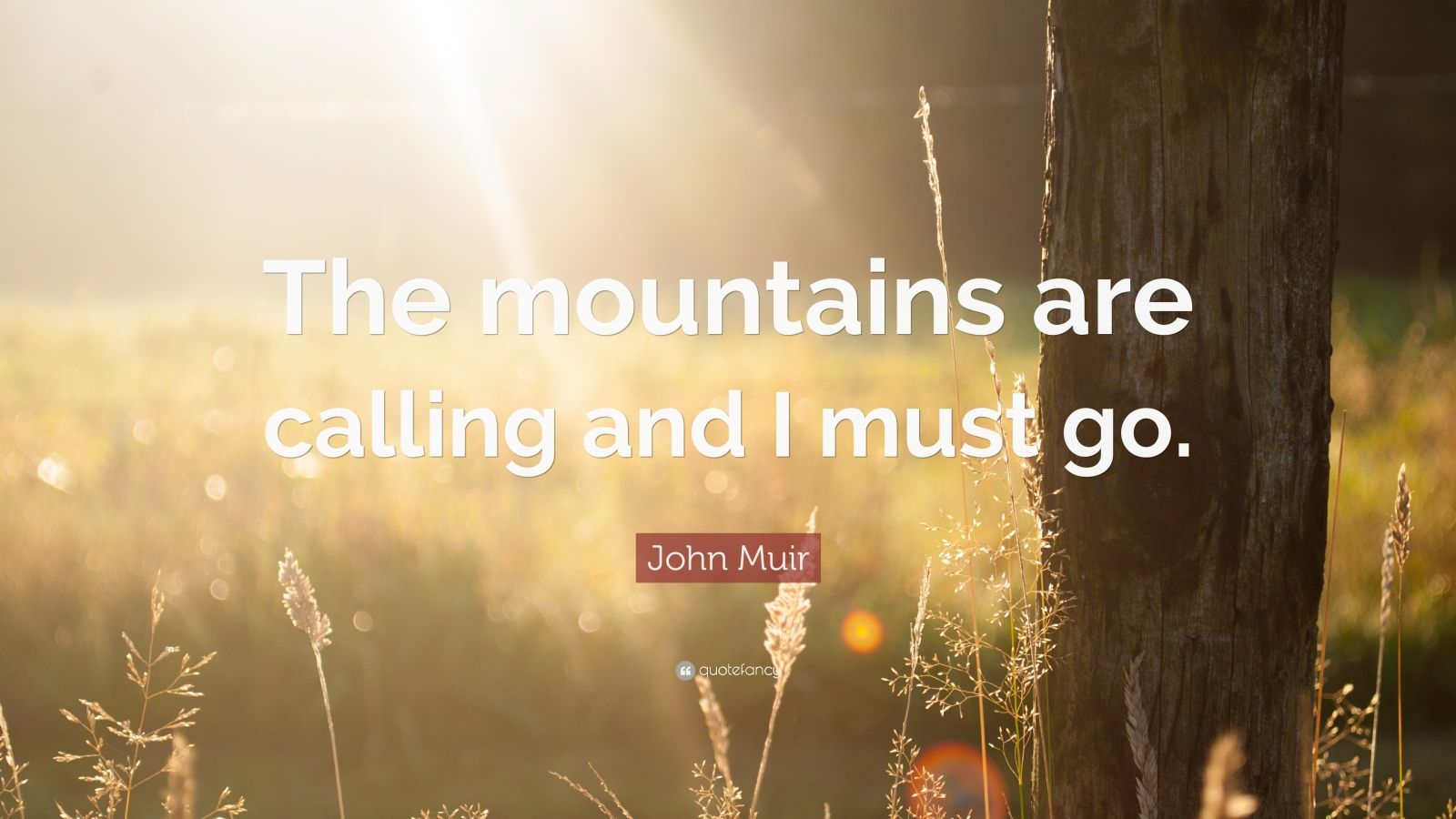 Motivational Quotes To Study Wallpaper John Muir Quote The Mountains Are Calling And I Must Go