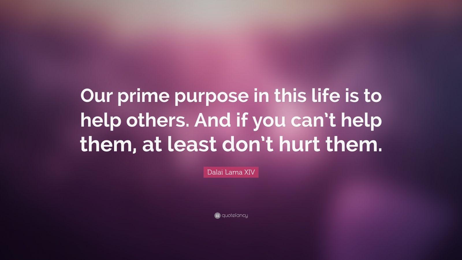 Dalai Lama Wallpaper Quotes Dalai Lama Xiv Quote Our Prime Purpose In This Life Is