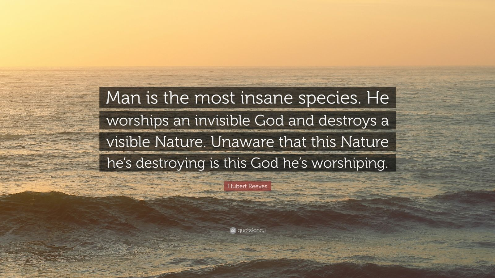 John Muir Quotes Wallpaper Hubert Reeves Quote Man Is The Most Insane Species He