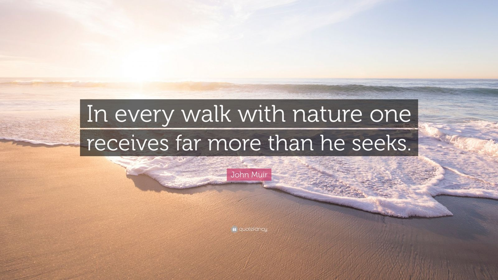 John Muir Quotes Wallpaper John Muir Quote In Every Walk With Nature One Receives