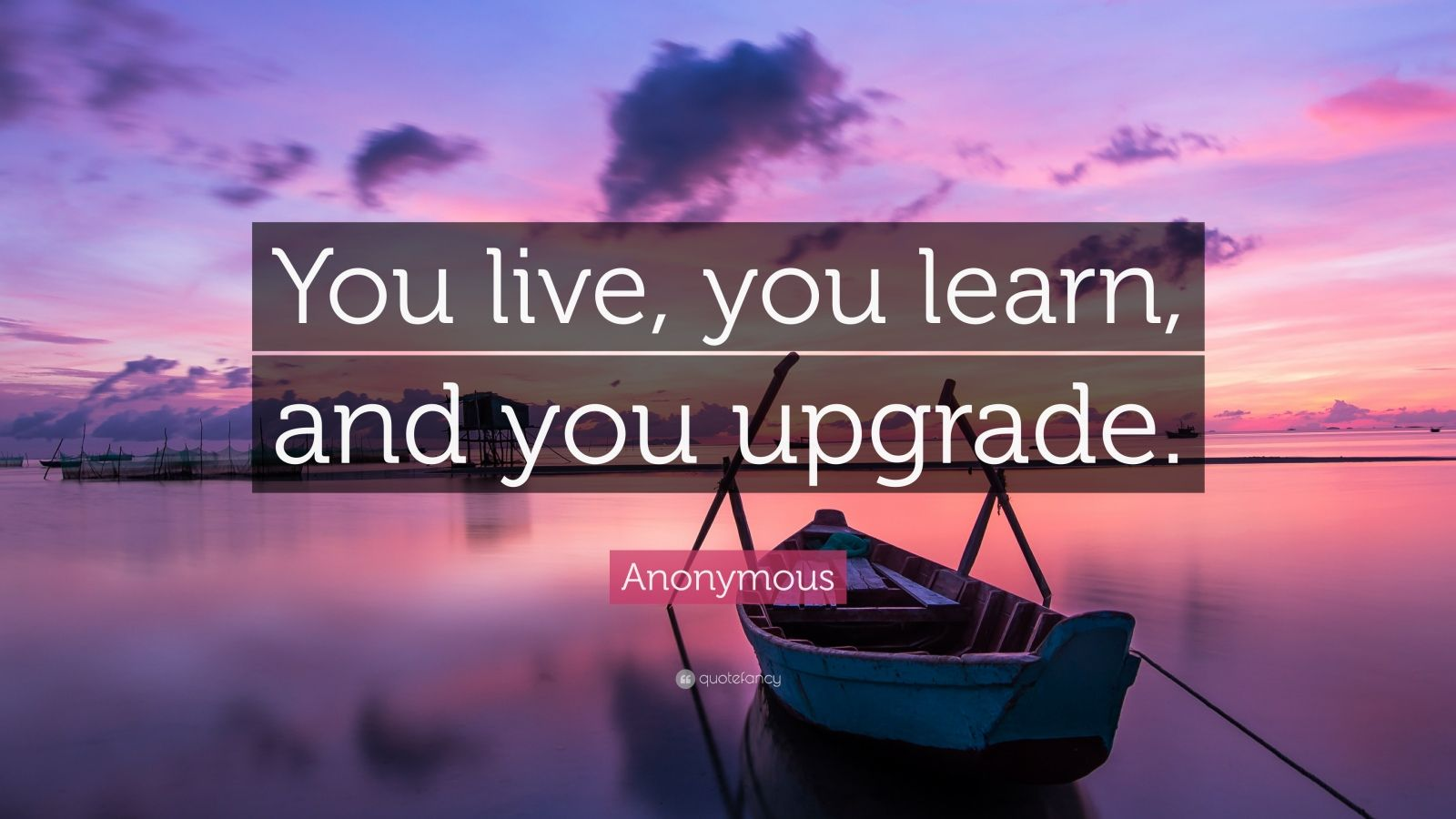 Turning 30 Quotes Wallpapers Anonymous Quote You Live You Learn And You Upgrade