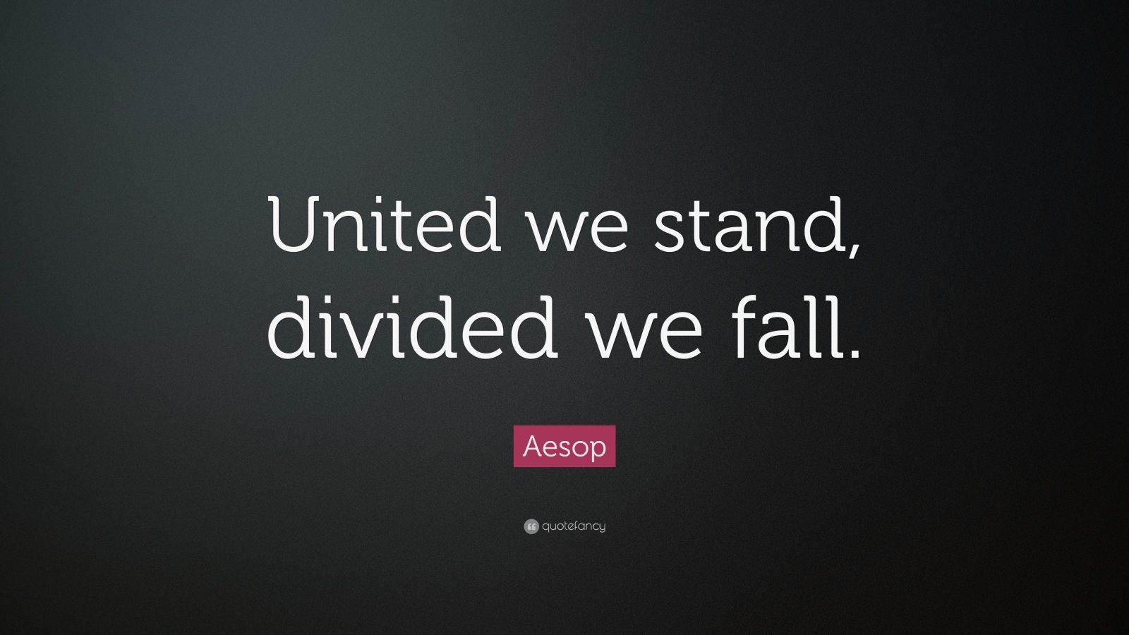 Divided We Fall Wallpaper Aesop Quote United We Stand Divided We Fall 12