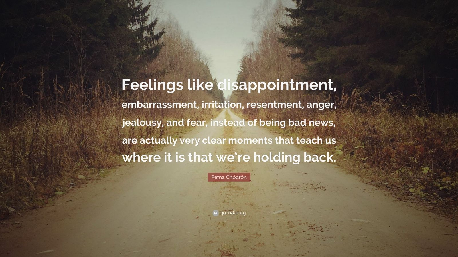Pema Chodron Quote Feelings Like Disappointment