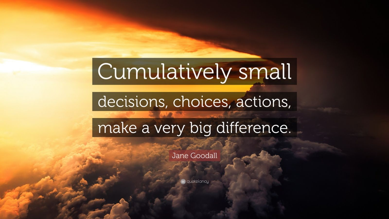Steve Jobs Wallpaper Quotes Jane Goodall Quote Cumulatively Small Decisions Choices