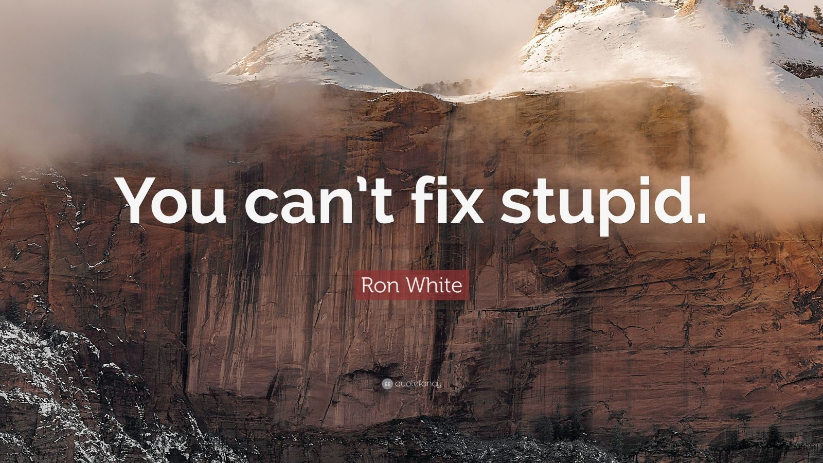 Wallpaper On Time Quotes Ron White Quote You Can T Fix Stupid 12 Wallpapers
