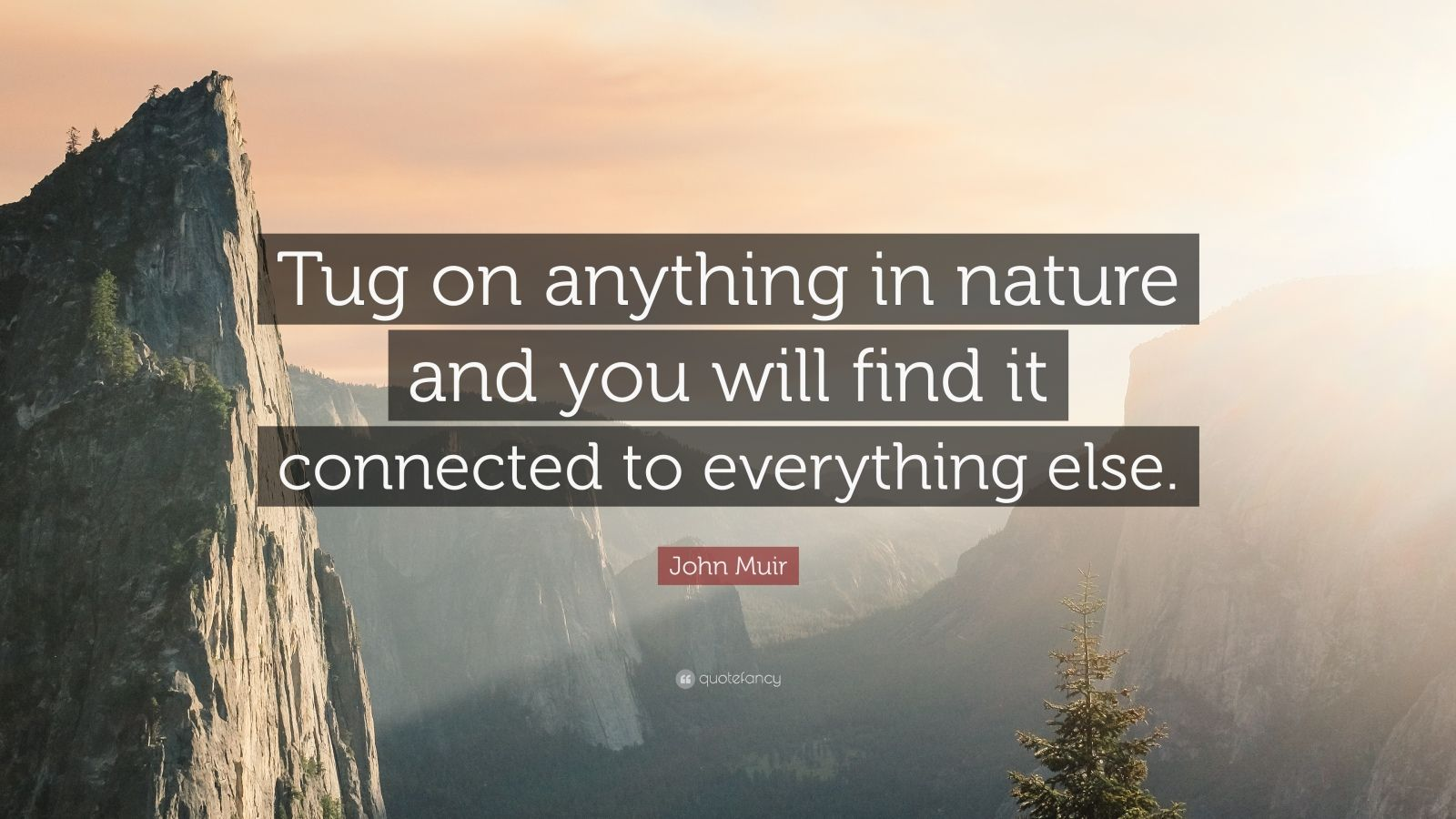 String Quotes Wallpaper John Muir Quote Tug On Anything In Nature And You Will