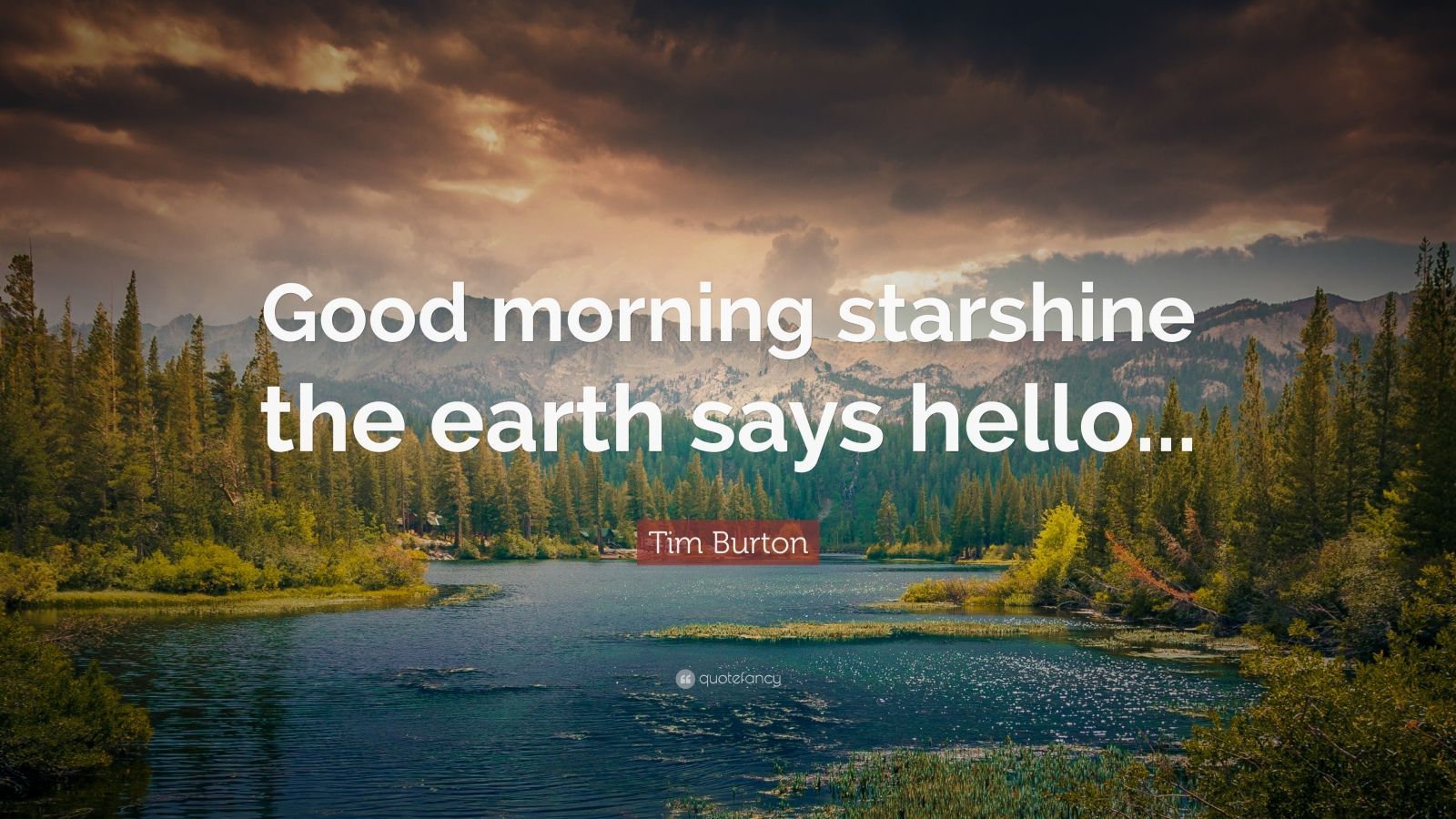 Good Morning Wallpapers With Inspirational Quotes Tim Burton Quote Good Morning Starshine The Earth Says